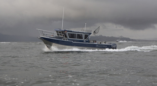 Duckworth 28 Offshore