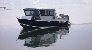 Wooldridge 20' Sport Offshore Pilothouse