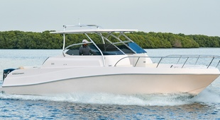 Gulf Craft Silvercraft 31