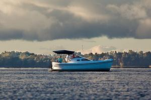 Delphia, Польша: Информация и модельный ряд моторных яхт, парусных яхт — itBoat