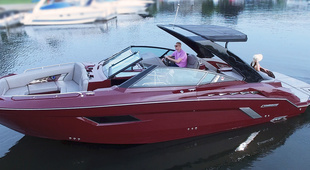 Cruisers Yachts 338 Palm Beach Edition - Bow Rider
